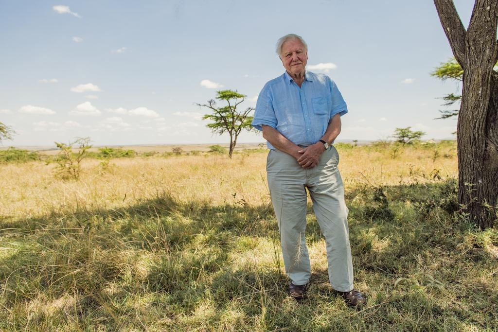 David Attenborough, hier in Kenia, filmde decennia mooie natuur over heel de wereld. Natuur die aan het verdwijnen is. ,,Ik ben zo bevoorrecht geweest. Ik zou me schuldig voelen als ik nu niets zou doen.'' WWF-UK / DAVID ATTENBOROUGH: A L